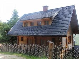 FerienhausSommer2010-3